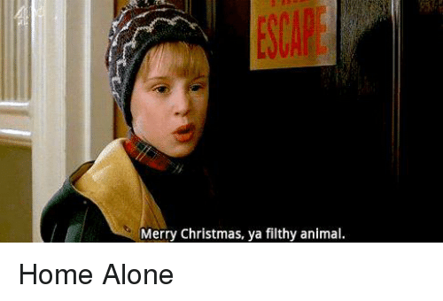 home alone memes and merry christmas ya filthy animal home - Merry Christmas Ya Filthy Animal