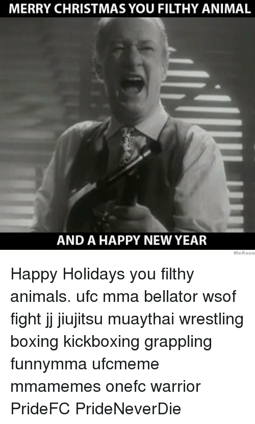 animals boxing and christmas merry christmas you filthy animal and a happy new