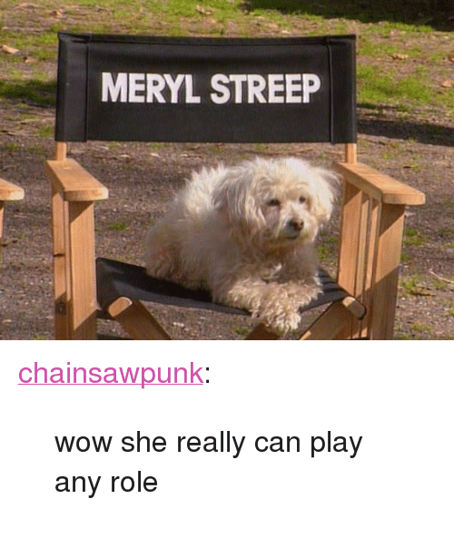 """Tumblr, Wow, and Blog: MERYL STREEP <p><a class=""""tumblr_blog"""" href=""""http://chainsawpunk.tumblr.com/post/49908113684/wow-she-really-can-play-any-role"""">chainsawpunk</a>:</p> <blockquote> <p>wow she really can play any role</p> </blockquote>"""