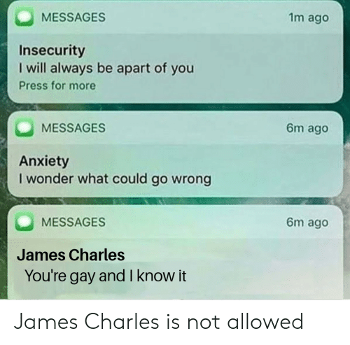 Anxiety, Dank Memes, and Wonder: MESSAGES  1m ago  Insecurity  I will always be apart of you  Press for more  MESSAGES  6m ago  Anxiety  I wonder what could go wrong  MESSAGES  6m ago  James Charles  You're  gay and l know it James Charles is not allowed