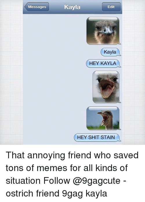 9gag, Memes, and Shit: Messages  Kayla  Edit  Kayla  HEY KAYLA  HEY SHIT STAIN That annoying friend who saved tons of memes for all kinds of situation Follow @9gagcute - ostrich friend 9gag kayla