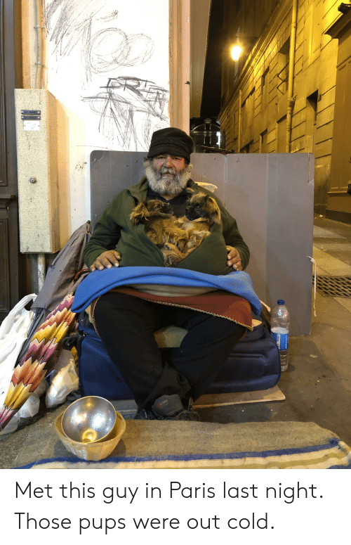 Paris, Cold, and Last Night: Met this guy in Paris last night. Those pups were out cold.