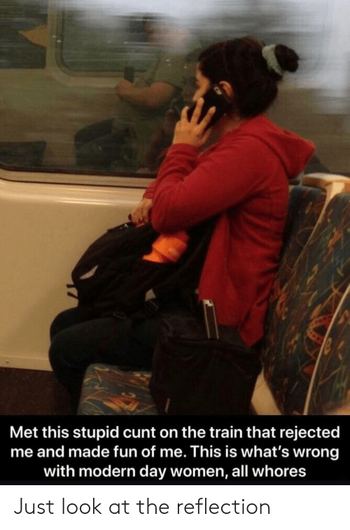 Cunt, Train, and Women: Met this stupid cunt on the train that rejected  me and made fun of me. This is what's wrong  with modern day women, all whores Just look at the reflection