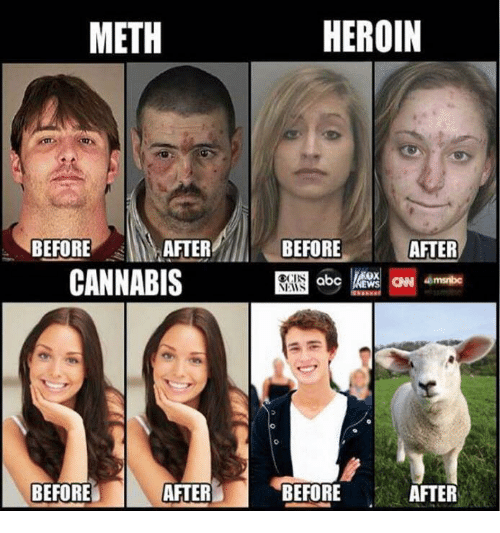 meth before after cannabis after before heroin before after kocbs 19624617 meth before after cannabis after before heroin before after kocbs