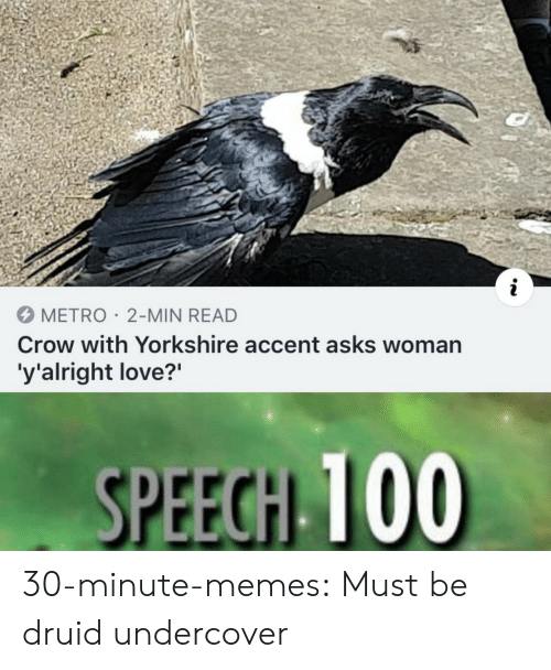 """Love, Memes, and Target: METRO 2-MIN READ  Crow with Yorkshire accent asks woman  'y'alright love?"""" 30-minute-memes: Must be druid undercover"""