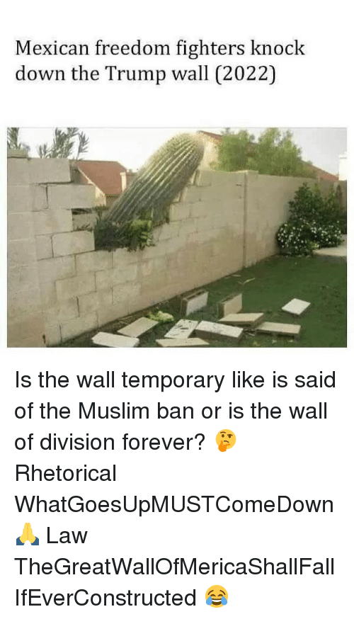 Memes, Muslim, and 🤖: Mexican freedom fighters knock  down the Trump wall (2022) Is the wall temporary like is said of the Muslim ban or is the wall of division forever? 🤔 Rhetorical WhatGoesUpMUSTComeDown 🙏 Law TheGreatWallOfMericaShallFall IfEverConstructed 😂