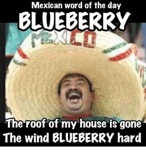 Mexican Word Of The Day Blueberry The Roof Of My House Is Gone The Wind Blueberry Hard Funny Meme On Me Me