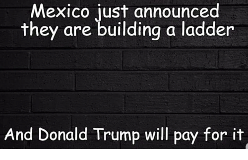 Donald Trump, Mexico, and Trump: Mexico just announced  they are building a ladder  And Donald Trump will pay for it