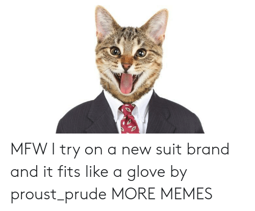 Dank, Memes, and Mfw: MFW I try on a new suit brand and it fits like a glove by proust_prude MORE MEMES
