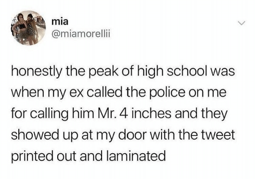 Police, School, and Humans of Tumblr: mia  @miamorelli  honestly the peak of high school was  when my ex called the police on me  for calling him Mr. 4 inches and they  showed up at my door with the tweet  printed out and laminated