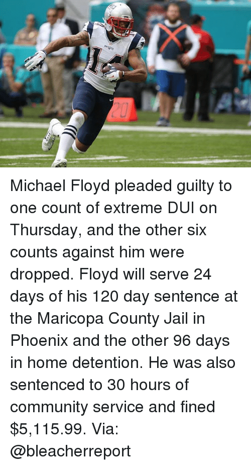 Community, Jail, and Memes: Michael Floyd pleaded guilty to one count of extreme