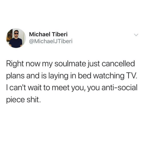 Shit, Michael, and Dank Memes: Michael Tiberi  @MichaelJTiberi  Right now my soulmate just cancelled  plans and is laying in bed watching TV.  I can't wait to meet you, you anti-social  piece shit