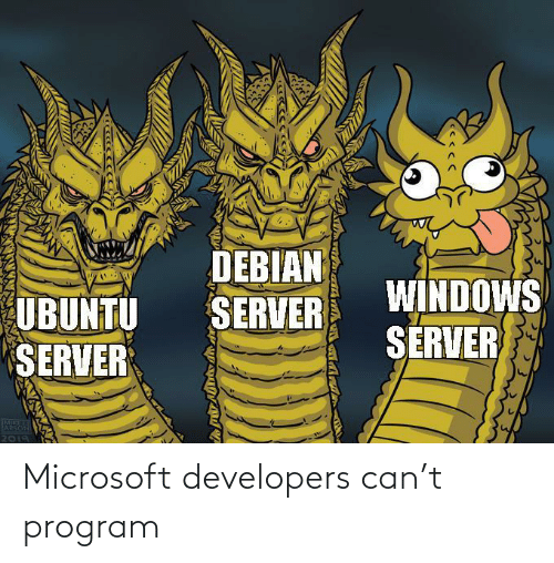 Microsoft, Can, and Program: Microsoft developers can't program