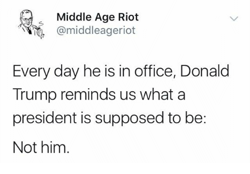 Donald Trump, Memes, and Riot: Middle Age Riot  middleageriot  Every day he is in office, Donald  Trump reminds us what a  president is supposed to be:  Not him