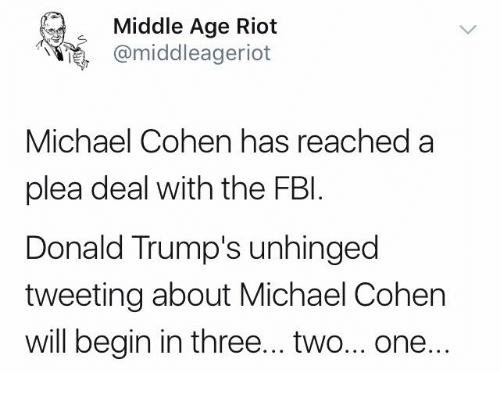 Middle Age Riot Michael Cohen Has Reached a Plea Deal With