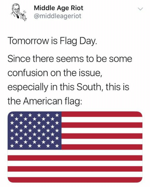 Memes, Riot, and American: Middle Age Riot  @middleageriot  Tomorrow is Flag Day.  Since there seems to be some  confusion on the issue,  especially in this South, this is  the American flag: