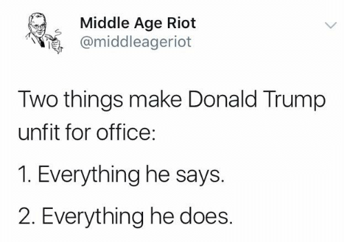 Donald Trump, Memes, and Riot: Middle Age Riot  @middleageriot  Two things make Donald Trump  unfit for office:  1. Everything he says.  2. Everything he does.