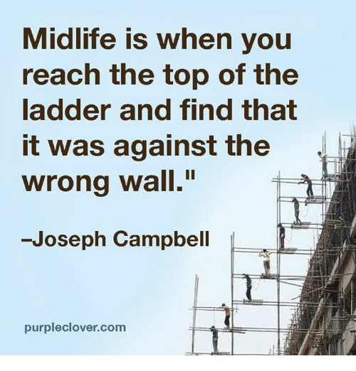 Memes, 🤖, and Walle: Midlife is when you  reach the top of the  ladder and find that  it was against the  wrong wall.  Joseph Campbell  purpleclover.com