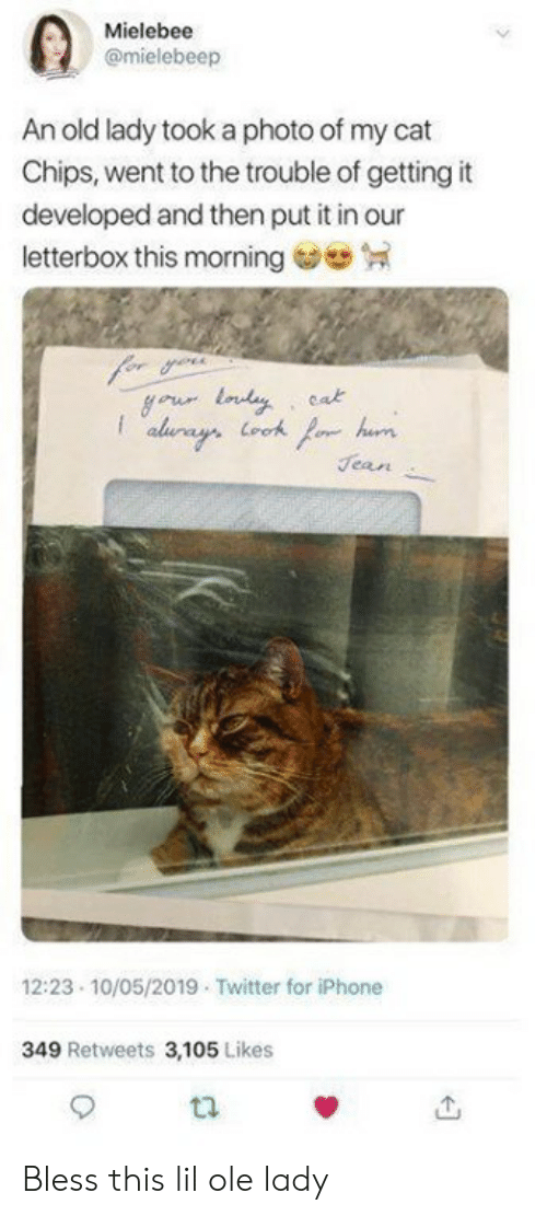 Iphone, Memes, and Twitter: Mielebee  @mielebeep  An old lady took a photo of my cat  Chips, went to the trouble of getting it  developed and then put it in our  letterbox this morning  cak  Jean  12:23 10/05/2019 Twitter for iPhone  349 Retweets 3,105 Likes Bless this lil ole lady