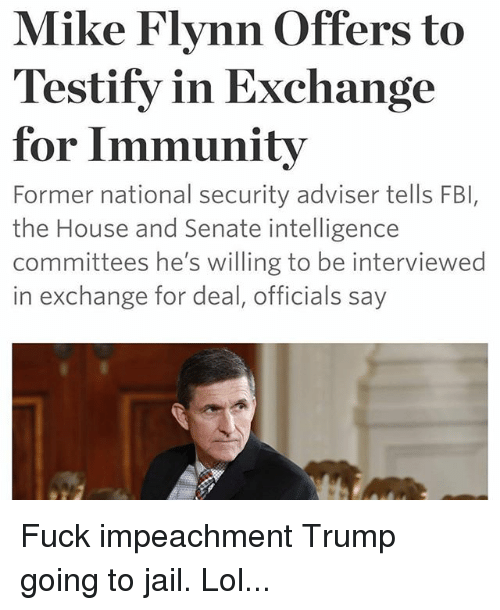 Fbi Jail And Lol Mike Flynn Offers To Testify In Exchange For Immunity