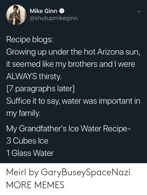 Dank, Family, and Growing Up: Mike Ginn  @shutupmikeginn  Recipe blogs:  Growing up under the hot Arizona sun,  it seemed like my brothers and I were  ALWAYS thirsty.  [7 paragraphs later]  Suffice it to say, water was important in  my family.  My Grandfather's Ice Water Recipe-  3 Cubes Ice  1 Glass Water Meirl by GaryBuseySpaceNazi MORE MEMES