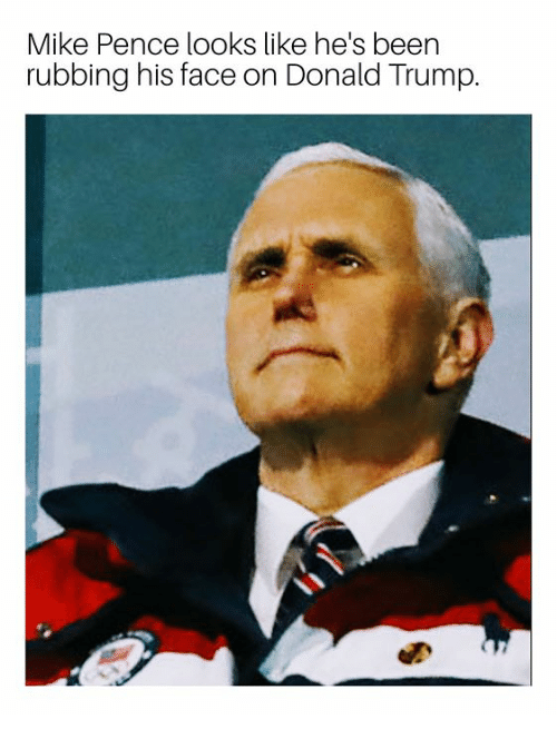 mike pence looks like hes been rubbing his face on 30865979 mike pence looks like he's been rubbing his face on donald trump