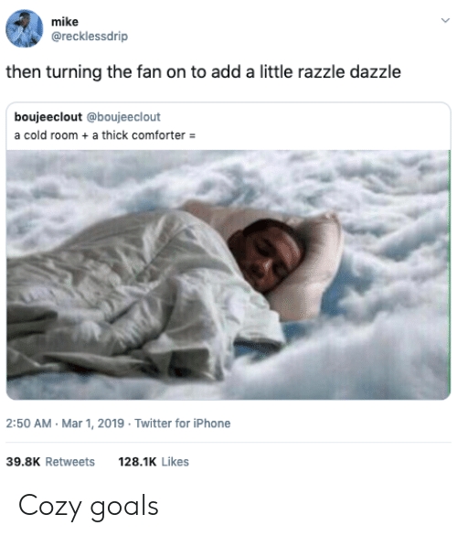 Goals, Iphone, and Twitter: mike  @recklessdrip  then turning the fan on to add a little razzle dazzle  boujeeclout @boujeeclout  a cold room a thick comforter  2:50 AM Mar 1, 2019 Twitter for iPhone  39.8K Retweets  128.1K Likes Cozy goals