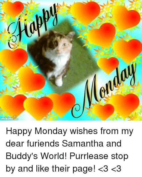 Mikimicom Happy Monday Wishes From My Dear Furiends Samantha And