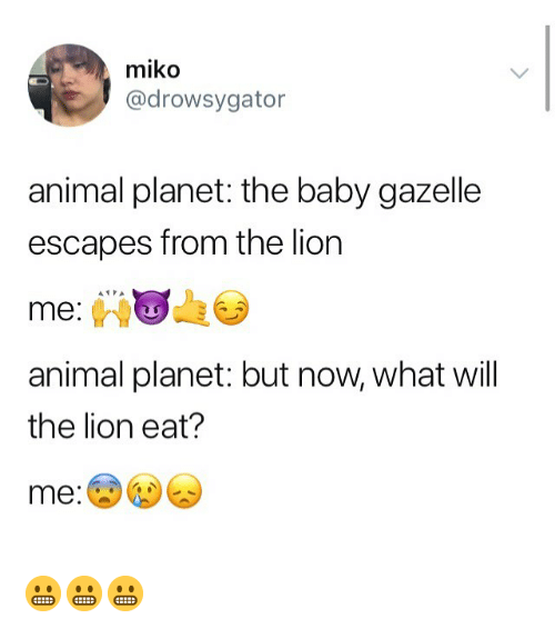 Animal Planet, Memes, and Animal: miko  @drowsygator  animal planet: the baby gazelle  escapes from the lion  me:  animal planet: but now, what will  the lion eat?  me 😬😬😬