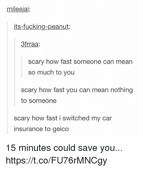 Fucking, Memes, and Mean: milesjai:  its-fucking-peanut:  3frraa  scary how fast someone can mean  so much to you  scary how fast you can mean nothing  to someone  scary how fast i switched my car  insurance to geico 15 minutes could save you... https://t.co/FU76rMNCgy