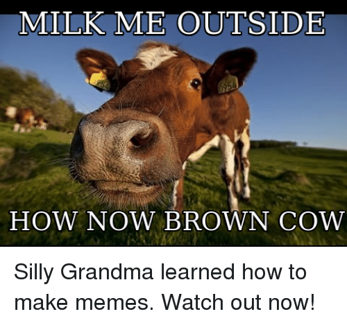 Milk Me Outside How Now Brown Cow Grandma Meme On Me Me