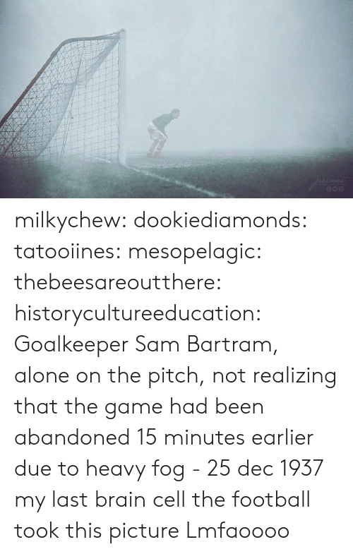Being Alone, Football, and Target: milkychew:  dookiediamonds:  tatooiines:   mesopelagic:  thebeesareoutthere:  historycultureeducation: Goalkeeper Sam Bartram, alone on the pitch, not realizing that the game had been abandoned 15 minutes earlier due to heavy fog - 25 dec 1937 my last brain cell   the football took this picture    Lmfaoooo