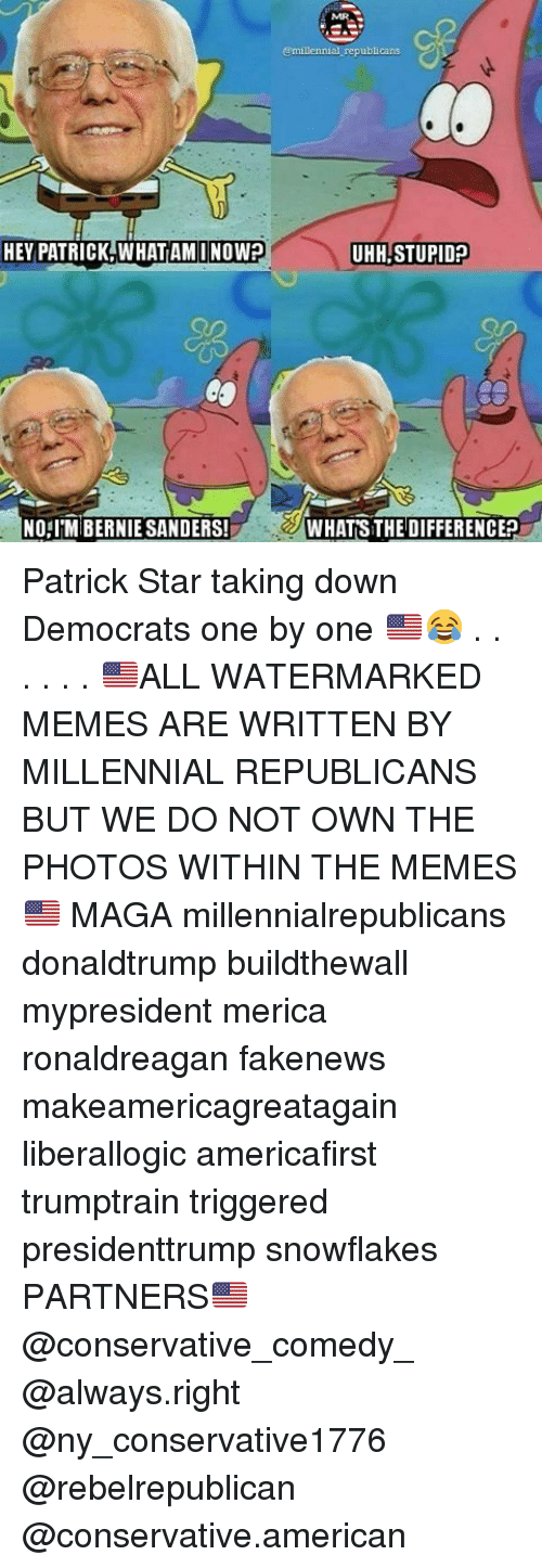 Bernie Sanders, Memes, and Patrick Star: @millennial republicans  HEY PATRICK WHATAMINOWP  THHLSTUPIDE  NORIM BERNIE SANDERS!  WHATSTHEDIFFERENCE2h Patrick Star taking down Democrats one by one 🇺🇸😂 . . . . . . 🇺🇸ALL WATERMARKED MEMES ARE WRITTEN BY MILLENNIAL REPUBLICANS BUT WE DO NOT OWN THE PHOTOS WITHIN THE MEMES🇺🇸 MAGA millennialrepublicans donaldtrump buildthewall mypresident merica ronaldreagan fakenews makeamericagreatagain liberallogic americafirst trumptrain triggered presidenttrump snowflakes PARTNERS🇺🇸 @conservative_comedy_ @always.right @ny_conservative1776 @rebelrepublican @conservative.american