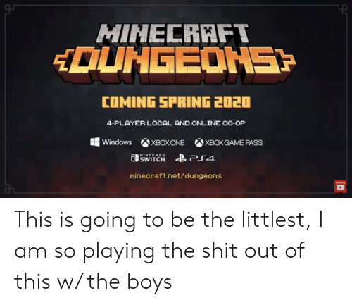 Ps4 Co Op Games 2020.Minecraft Dungeons Coming Spring 2020 4 Player Local And