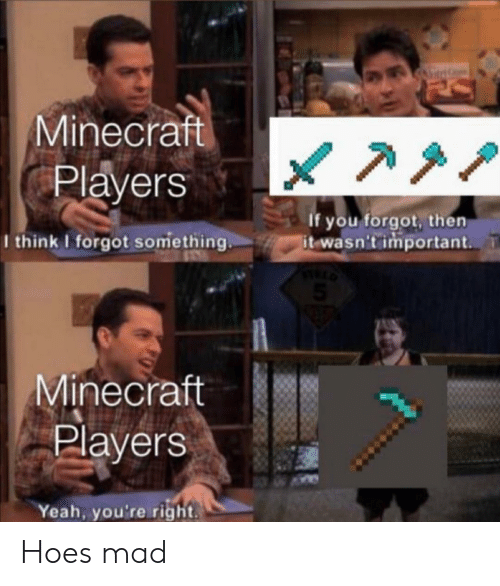 Minecraft Players if You Forgot Then It Wasn't Important ...