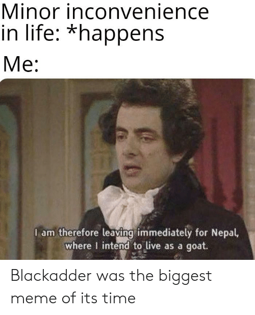 Life, Meme, and Reddit: Minor inconvenience  in life: *happens  Ме:  I am therefore leaving immediately for Nepal,  where I intend to live as a goat. Blackadder was the biggest meme of its time