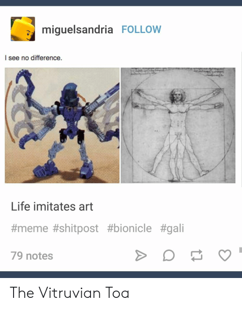 Life, Meme, and Bionicle: miquelsandria FOLLOW  l see no difference.  Life imitates art  #meme #shitpost #bionicle #gali  79 notes The Vitruvian Toa