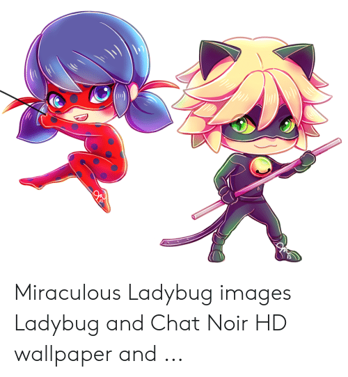 Miraculous Ladybug Images Ladybug And Chat Noir Hd Wallpaper