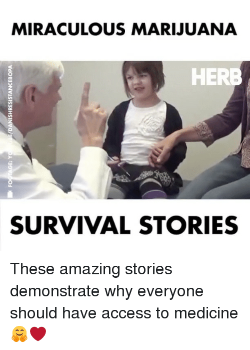 Memes, Access, and Marijuana: MIRACULOUS MARIJUANA  HERB  SURVIVAL STORIES These amazing stories demonstrate why everyone should have access to medicine 🤗❤️
