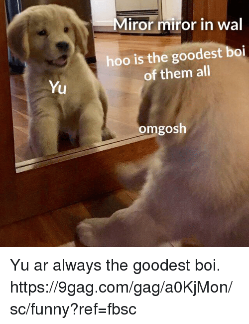 9gag, Dank, and Funny: Miror miror in wal  hoo is the goodest boi  of them all  Yu  omgosh Yu ar always the goodest boi.  https://9gag.com/gag/a0KjMon/sc/funny?ref=fbsc