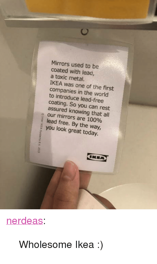 "Anaconda, Ikea, and Tumblr: Mirrors used to be  coated with lead,  a toxic metal.  IKEA was one of the first  companies in the world  to introduce lead-free  coating. So you can rest  assured knowing that all  o our mirrors are 100%  lead free. By the way,  you look great today.  IKEA <p><a href=""https://nerdeas.tumblr.com/post/172844521461/wholesome-ikea"" class=""tumblr_blog"">nerdeas</a>:</p>  <blockquote><p>Wholesome Ikea :)</p></blockquote>"