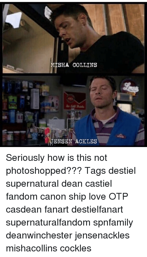 Memes, Photoshop, And Canon: MISHA COLLINS ENSEN ACKLES Seriously How Is  This Not  Misha Collins Resume
