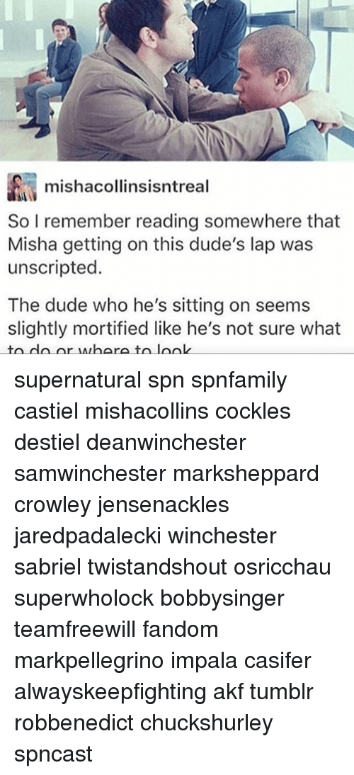 Dude, Memes, and Tumblr: mishacollinsisntreal  So I remember reading somewhere that  Misha getting on this dude's lap was  unscripted.  The dude who he's sitting on seems  slightly mortified like he's not sure what  to dlo or where t supernatural spn spnfamily castiel mishacollins cockles destiel deanwinchester samwinchester marksheppard crowley jensenackles jaredpadalecki winchester sabriel twistandshout osricchau superwholock bobbysinger teamfreewill fandom markpellegrino impala casifer alwayskeepfighting akf tumblr robbenedict chuckshurley spncast