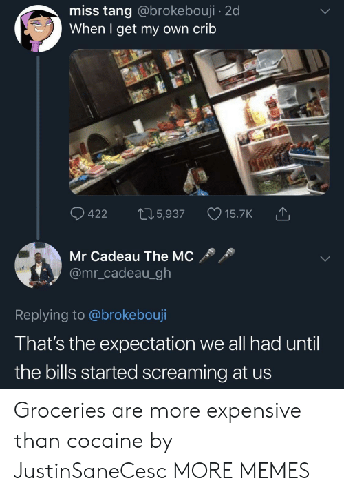 Dank, Memes, and Target: miss tang @brokebouji - 2d  When I get my own crib  Mr Cadeau The MC  @mr_cadeau_gh  Replying to @brokebouji  That's the expectation we all had until  the bills started screaming at us Groceries are more expensive than cocaine by JustinSaneCesc MORE MEMES