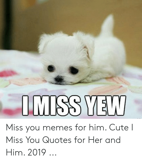 Miss You Memes for Him Cute I Miss You Quotes for Her and