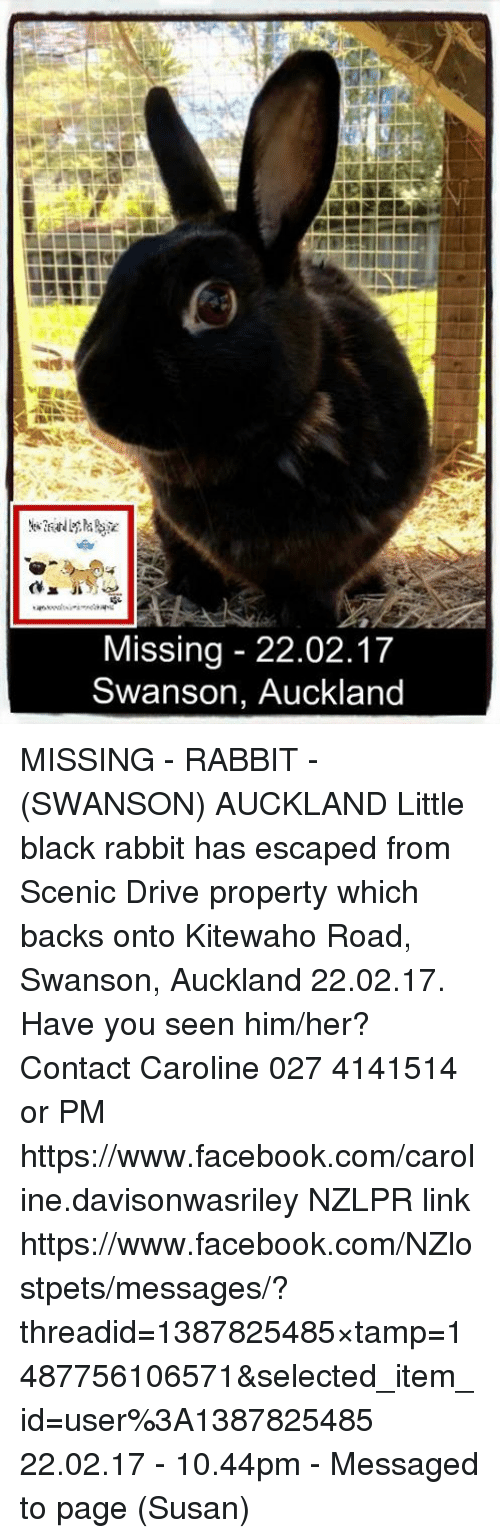 Facebook, Memes, and Black: Missing 22.02.17  Swanson, Auckland MISSING - RABBIT - (SWANSON) AUCKLAND  Little black rabbit has escaped from Scenic Drive property which backs onto Kitewaho Road, Swanson, Auckland 22.02.17. Have you seen him/her?  Contact Caroline 027 4141514 or PM https://www.facebook.com/caroline.davisonwasriley  NZLPR link https://www.facebook.com/NZlostpets/messages/?threadid=1387825485&timestamp=1487756106571&selected_item_id=user%3A1387825485  22.02.17 - 10.44pm - Messaged to page (Susan)