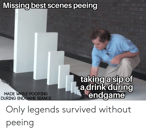 Reddit, Best, and Legends: Missing best scenes peeing  taking a sipof  a drink during  endgame  MADE WHILE POOPING  DURING ENDGAME SEANCE Only legends survived without peeing