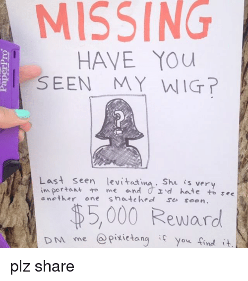 missing-have-you-i-seen-my-wig-last-seen