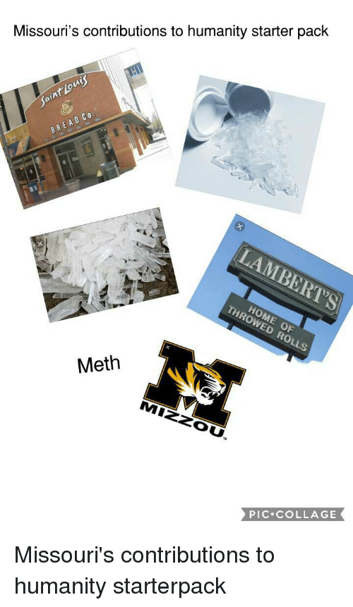 Starter Packs, Collage, and Starter Pack: Missouri's contributions to humanity starter pack  0  Meth  PIC COLLAGE