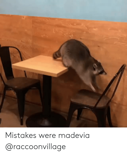 Instagram, Target, and Http: Mistakes were madevia @raccoonvillage